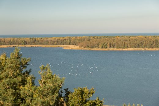 Aussichtsturm Barhöft mit Blick über den Gellenstrom, zur Ostsee führt
